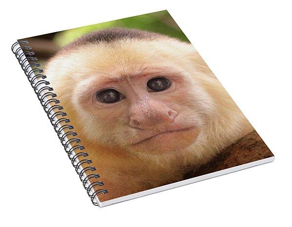 Curious George Spiral Notebook