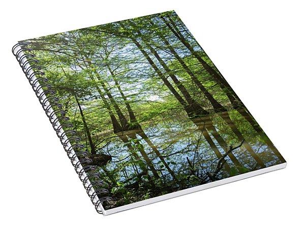 Cypress Forest Spiral Notebook