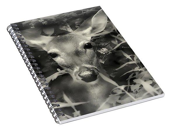 Doe's Summer Portrait Spiral Notebook