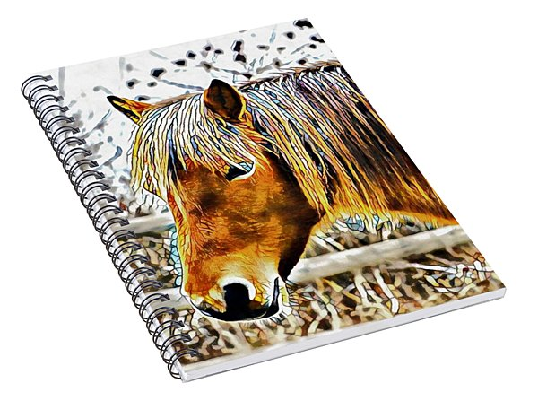 Facets Of Friendship Spiral Notebook