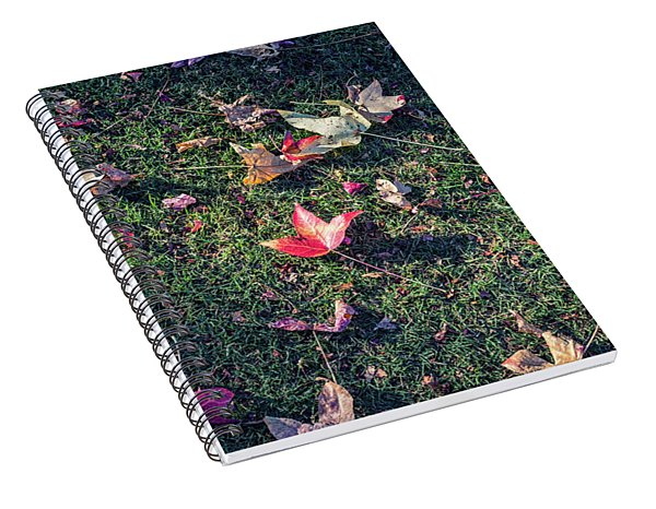 Fallen Beauty #3 Spiral Notebook