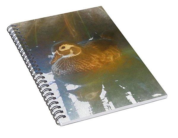 Female Wood Duck. Spiral Notebook