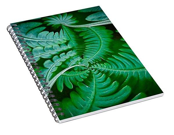 Fern Dance Spiral Notebook