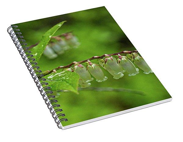 Fetter-bush Spiral Notebook