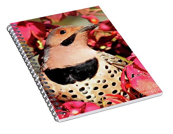 Fire Bush Flicker Spiral Notebook