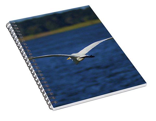 Flight Of The Egret Spiral Notebook