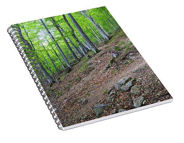 Forest On Balkan Mountain, Bulgaria Spiral Notebook