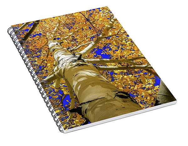 Golden Aspens In Grand Canyon Spiral Notebook