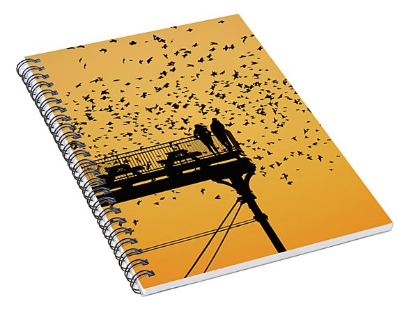 Golden Hour Starlings Over Aberyswyth Pier Spiral Notebook