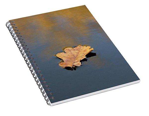 Golden Leaf On Water Spiral Notebook