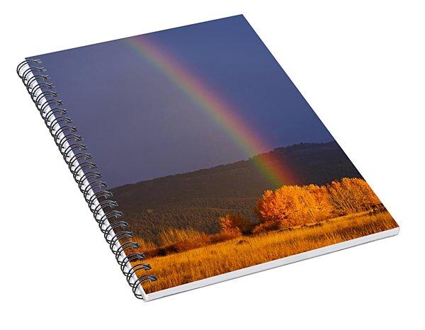 Golden Tree Rainbow Spiral Notebook