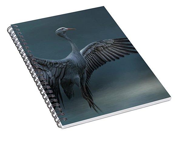 Graceful Dancer Spiral Notebook