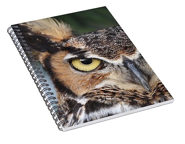 Great Horned Owl Eyes 51518 Spiral Notebook