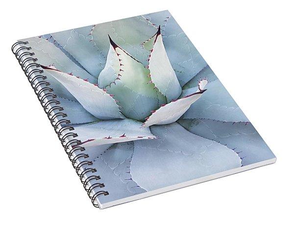 Grey Cactus Spiral Notebook