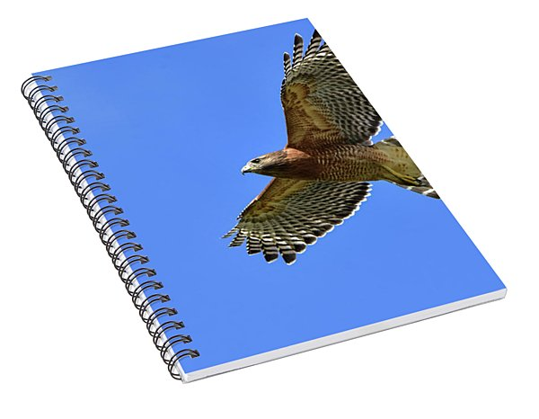 Hawk On The Go Spiral Notebook