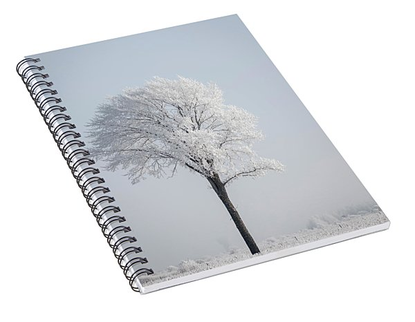 Hoar Frost At Bvg 2018-8 Spiral Notebook