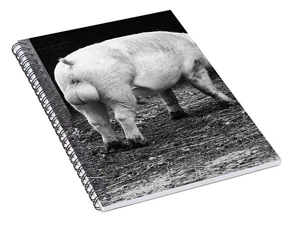hog Spiral Notebook