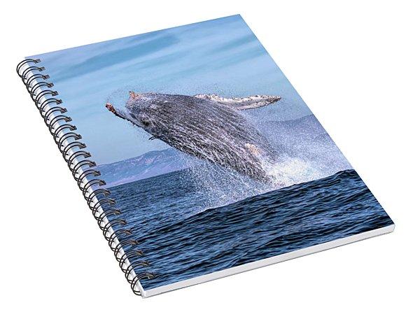 Humpback Breaching - 02 Spiral Notebook