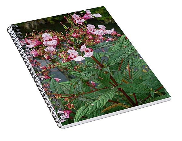 Impatiens Glandulifera, Flowers At Shore Spiral Notebook