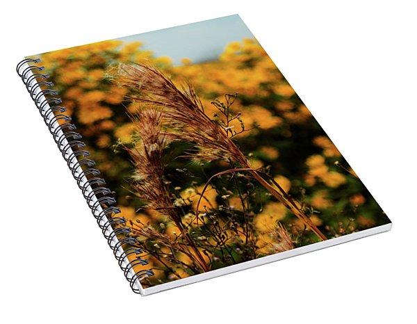 Beautiful Nature Spiral Notebook