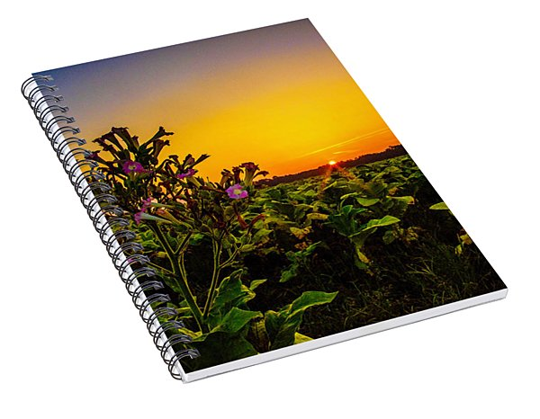 Last Of The Tobacco Blooms Spiral Notebook