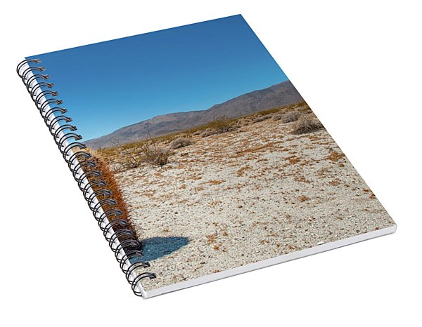 Lone Barrel Cactus Spiral Notebook