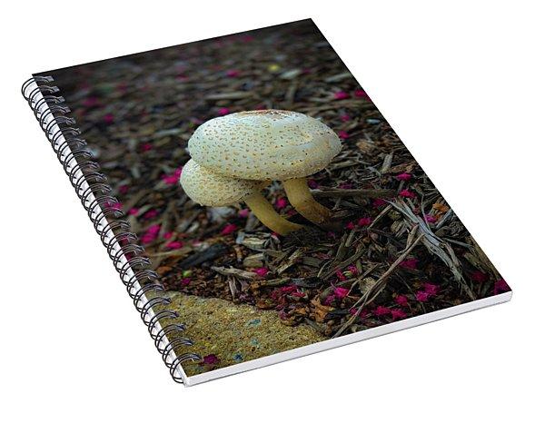 Magical Mushrooms Spiral Notebook