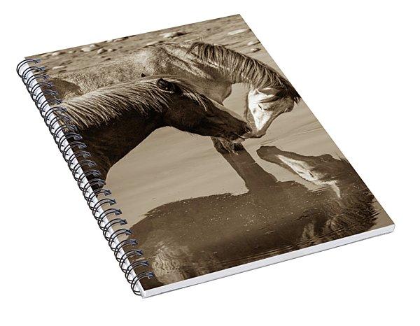 Mirrored Souls Spiral Notebook