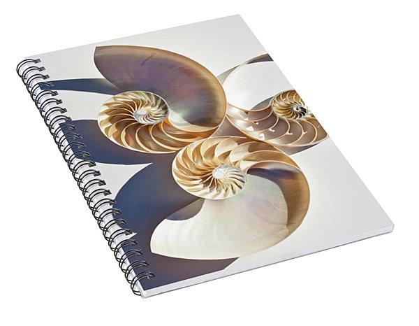 Nautilus 0425 Spiral Notebook
