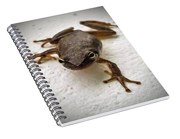 Ninja Frog Spiral Notebook