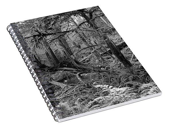 Olympic Rainforest Spiral Notebook