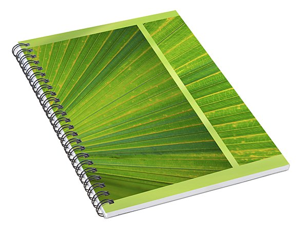 Palmetto Spiral Notebook