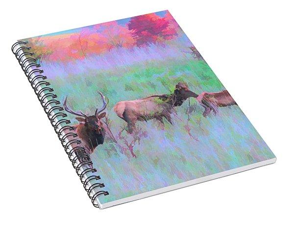 Pennsylvania Ek Spiral Notebook