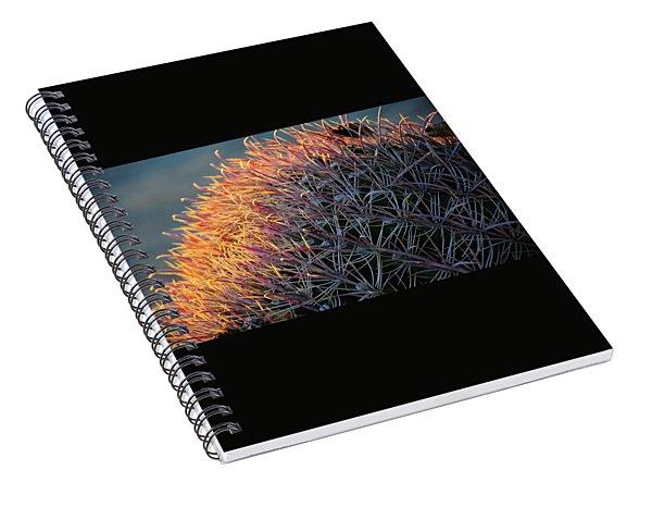 Pink Prickly Cactus Spiral Notebook