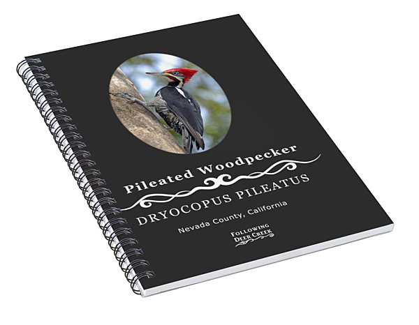 Pleated Woodpecker Spiral Notebook
