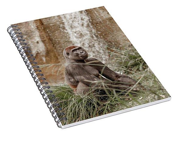 Presence Spiral Notebook