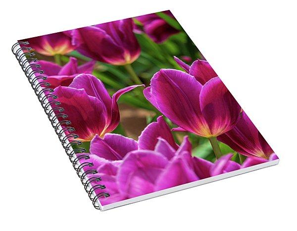 Pretty Purple Tulips Spiral Notebook