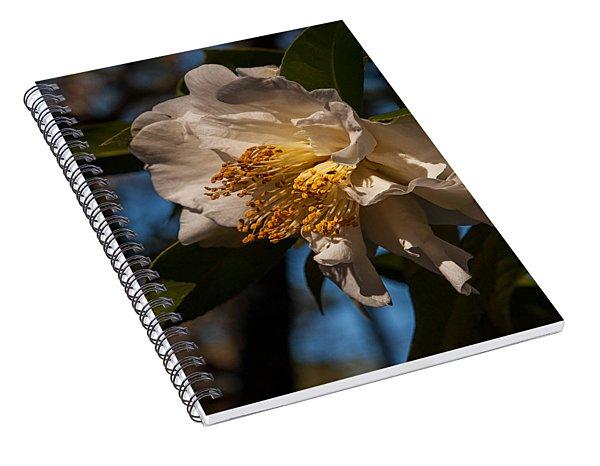 Prom Queen  Spiral Notebook