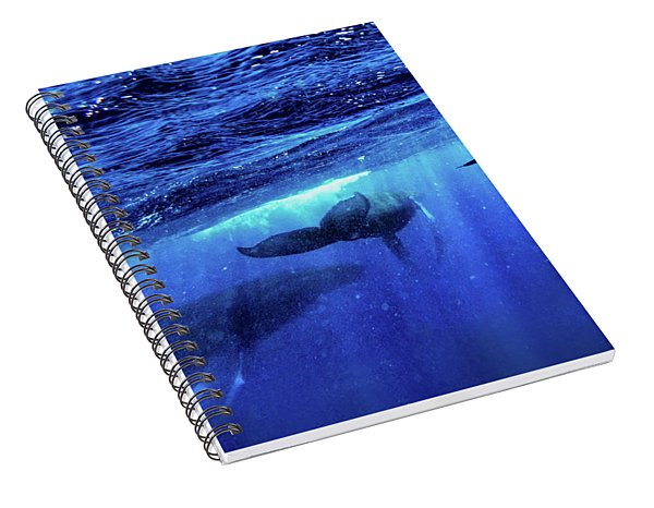 Return Spiral Notebook