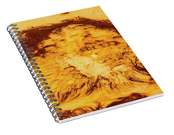 Rhapsody In Yellow Spiral Notebook