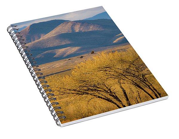Sandhill Cranes Near The Bosque Spiral Notebook