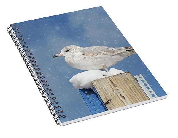 Spiral Notebook featuring the photograph Seagull In The Snow by Kim Hojnacki