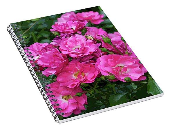 Shrub Rose Stylized Spiral Notebook