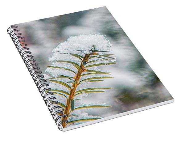 Snow Needle Spiral Notebook