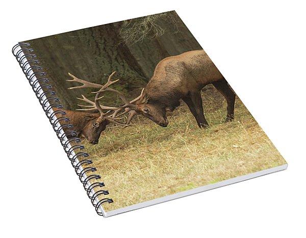 Sparring Spiral Notebook