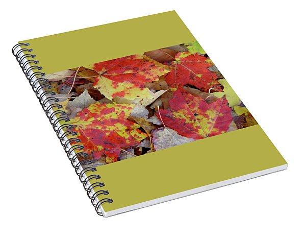 True Autumn Colors Spiral Notebook