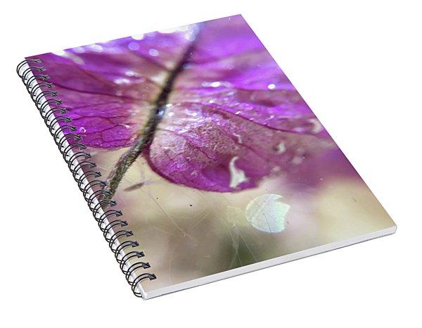 Tymp Spiral Notebook