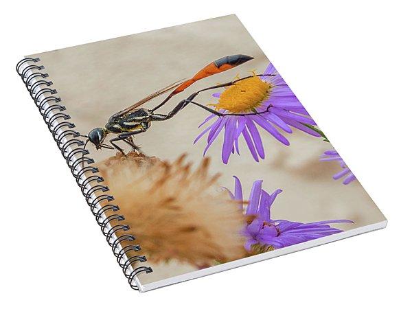 Wasp At White Sands Spiral Notebook