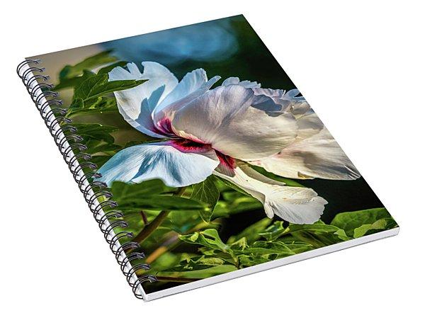 White Petals #i4 Spiral Notebook