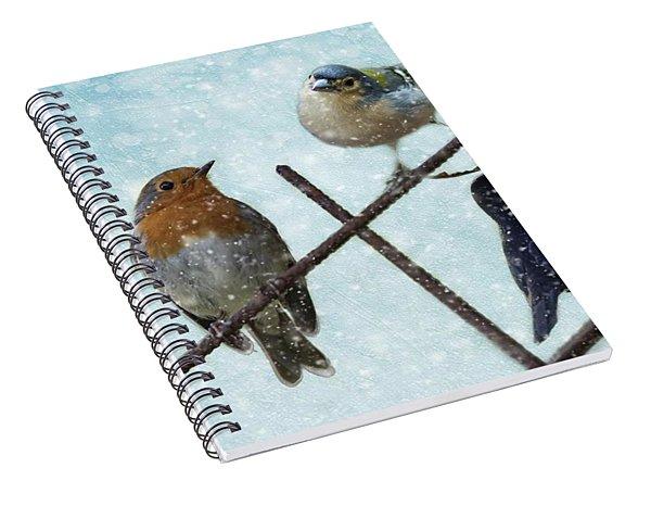 Winter Birds Spiral Notebook